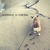 Summer is ending …
