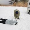 雪遊び・・・危なかったけど楽しかった。