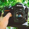 【機材レビュー】心変わりは何かのせい 2020年に Nikon 旗艦 D4 を購入しました!【作例あり】