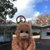 すごいぞ、王子動物園!