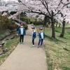 開成山公園に花見に行ってきました