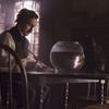 映画感想:「黒猫/スチュアート・ゴードン」<13 thirteen ~マスターズ・オブ・ホラー2~>(65点/サスペンスホラー)