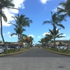 Hawaii Day4 pmこの木なんの木〜空港〜買物