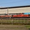 第806列車 「 DE10 1118の後藤入場配給を狙う 」