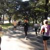 シドニーマラソンの取説 公園は東京ドームの数十倍