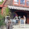 ソルトスプリング島のオススメ観光スポット6選