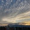 天気と空と:2020-11-26〜11-30