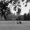 天気が良いので乳母車で公園散歩 新宿御苑
