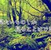 屋久島の森が教えてくれたこと その3 人は見たいものしかみることができない。