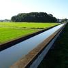 農業用水路に萌えたポタ