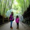 日本旅行2017年4月京都旅行①🚌 嵐山の朝、竹林散策♪