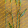 花麦(はなむぎ)