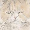 【イラスト】猫:はまぐりちゃん【似顔絵】