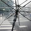 台風19号の中みた迷惑行為とバカチューバー