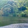 堂ヶ谷池(静岡県牧之原)