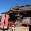 【茨城県のおすすめ神社】茨城の東照宮と言われる大杉神社に初詣、外観がすごい派手
