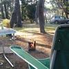 「大洗キャンプ場」に「日川浜キャンプ場」そして「鴨川」へ南下、のんびり3泊の一人旅