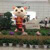 郑州新郑国际机场(帰国とエピローグ)