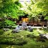 【京都】『建仁寺』に行ってきました。 京都観光 京都旅行 旅気分 女子旅