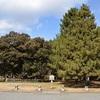 京都御苑の鷹司邸跡。