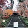 鎌倉の紅葉情報2020 今日の円覚寺 12月16日