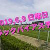 2019,6,9 日曜日 トラックバイアス予想 (東京競馬場、阪神競馬場)