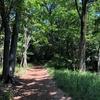 狭山丘陵の緑蔭を歩く 狭山池から八国山緑地まで