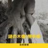 探索シリーズ:謎の木像照手姫に迫る。