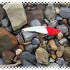 10色エギセット1500円の激安釣具メーカー「オルルド」を探る