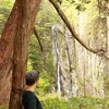 5月17日 関西屈指の難ルート!双門の滝コース!