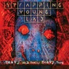 #0334) HEAVY AS A REALLY HEAVY THING / STRAPPING YOUNG LAD 【1995年リリース】