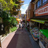 【α6000と】東京の自然、御岳山とロックガーデンを求めて練り歩いた話