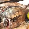 またまた珍しいお魚   『オキアジ』です