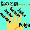 スペイン語・指の名前