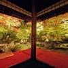 2020年11月の京都旅行 2泊3日 2日目(後半)