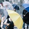 「雨の日デートオススメ10プラン」に載っていた内容がとても恥ずかしくてできそうにない
