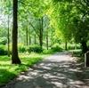 【群馬県伊勢崎市】いせさき市民のもり公園~遊具も充実の大きい公園~