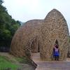 アート旅10小豆島上陸!ワラやら竹やら自然素材で作る芸術