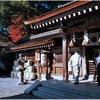 国幣中社・出雲大神宮(亀岡市)の秋風景 part47