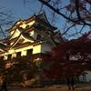 彦根城の紅葉 ~ひこにゃんを探して三千里~