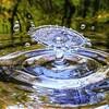 【水筒】BPAフリーで お手入れラクラク! ドリンク・ボトル  ①ハリオとOXO