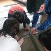シン・ひよこ学童 DIY大作戦