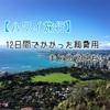 学生が行く12日間のハワイ旅行でかかった総費用をまとめてみた。