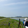 5月の重信川中流探鳥会