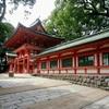 大宮「氷川神社」日本一長い参道の散歩もおすすめ