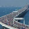 【木更津キャッツアイ】ちばアクアラインマラソン当選結果発表‼︎【海ほたる】