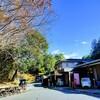 【埼玉県ときがわ町】 玉川温泉から嵐山渓谷の旅ランはトレランあり、景観ありで見どころいっぱい!