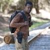 ウォーキング・デッド/シーズン4【第13話】あらすじと感想(ネタバレあり)Walking Dead
