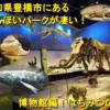 愛知県豊橋市にあるのんほいパークが凄い!博物館編