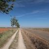 スペイン巡礼:【Day 23】Calzada del Coto → Reliegos (26.4km)